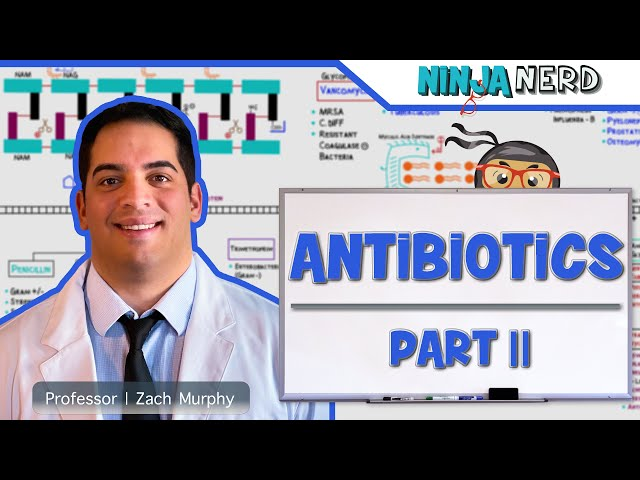 Pharmacology | Antibiotics: Folic Acid Pathway | Part 2