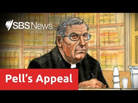 Disgraced cardinal George Pell fights to clear name