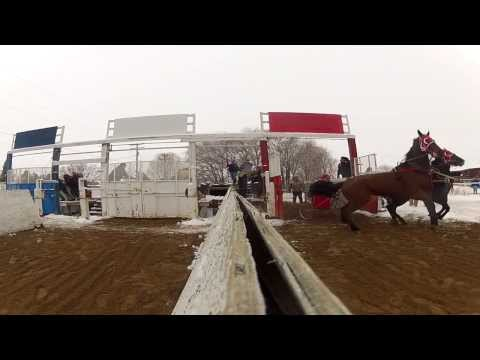 Young Gunz Chariot Racing Video #2