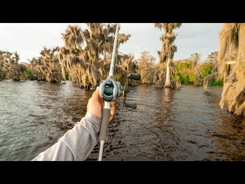 TOUGH Fishing Big Lake Filled With Cypress Trees || Mid Day Topwater Window
