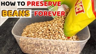 How to Store and Preserve Beans to Last for a Long Time • Yummieliciouz Food Recipes