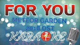 FOR YOU Meteor Garden 2018 OST lyrics (KARAOKE VERSION)