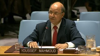 "IPI's Youssef Mahmoud Addresses the UN Security Council on ""Sustaining Peace"""