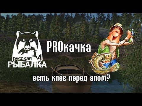 Режут клёв Миф или реальность?  Русская Рыбалка 4Russian Fishing 4