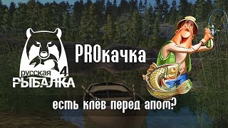 Режут клёв. Миф или реальность? - Русская Рыбалка 4/Russian Fishing 4