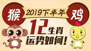 2019【生肖猴鸡】下半年运势
