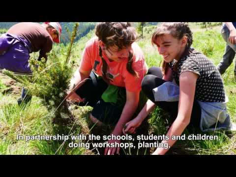 Reforestation project in Romania with AccorHotels, Mihai Eminescu Trust (MET) & PUR Projet