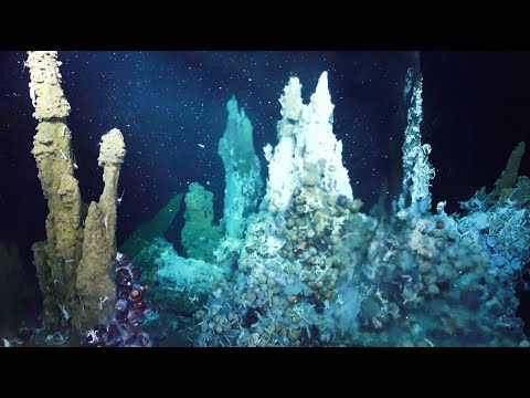 Why We Explore ~ a collaboration with @EVNautilus and @ocean