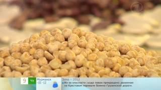 О пользе фасоли и гороха