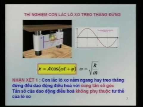 Ôn tập Vật lý 12 - Bài 3: Con lắc lò xo thẳng đứng (phần 2)