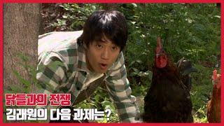 [식객] 이번엔 닭이다! 닭들과의 전쟁을 시작한 김래원
