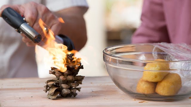 How to Cook a Twinkie w/ a Flaming Pine Cone | Kitchen Lab