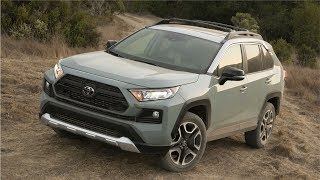 2019 Toyota RAV4 Adventure Lunar Rock Ice Edge Roof