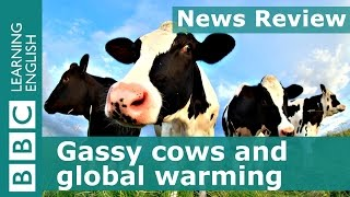 BBC News Review: Gassy cows and global warming