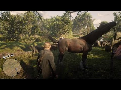 Shire Caballos Red Dead Redemption 2