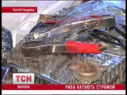 Электролов в Чернигове