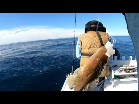 Sydney Winter Offshore Fishing