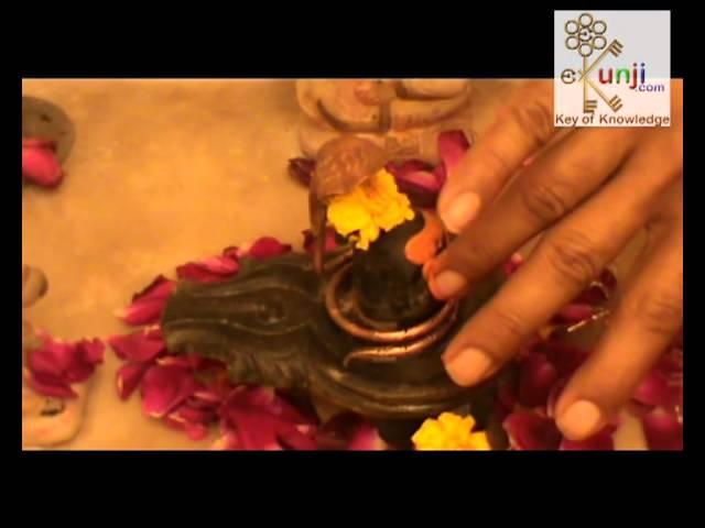 Videogram: Shiva Puja Vidhi with Shiva Mantra for Shivaratri