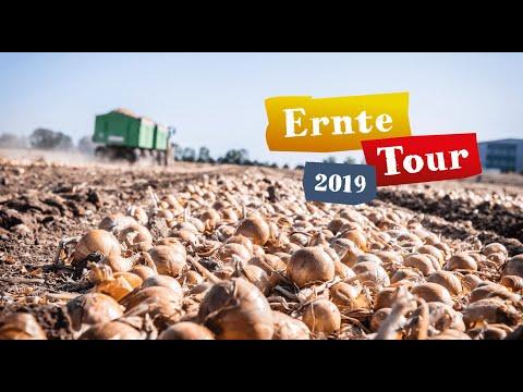 """Zwiebel Ernte In Magdeburg Und Calbe/Saale – """"Deutschland – Mein Garten."""" Ernte-Tour 2019"""