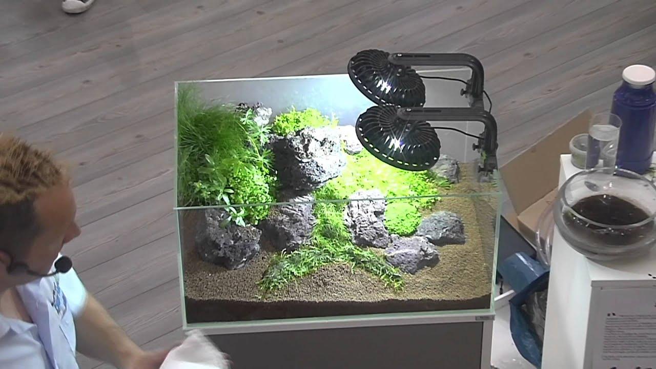 Interzoo 2012: Aquascaping made by Oliver Knott 4. Aquarium Teil 2 mit ...