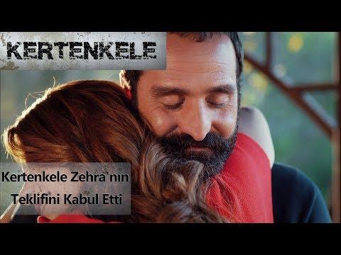 Kertenkele Zehra'nın teklifini kabul etti...