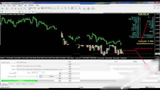 forex ea 10$ to 1000$ in 5 days
