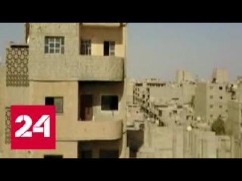 Виктор Бондарев: работа ВКС России придала уверенности сирийской армии - Россия 24