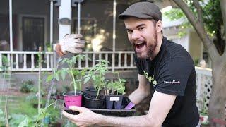 Mia Ĝardeno en Esperanto!