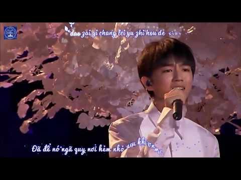 [Vietsub + Kara] Lời tự tình của cây LIVE - Vương Tuấn Khải - Concert sinh nhật 17 tuổi