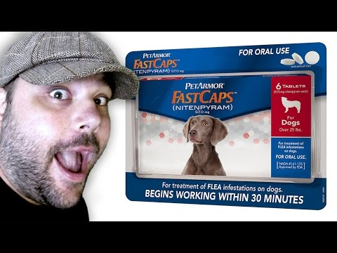 PetArmor FastCaps - (Best) Flea Pills for Dogs Review