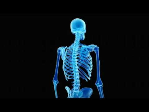 Cure Scoliosis + Re-Lengthen The Spine (Grow Taller)―∎𝘢𝘶𝘥𝘪𝘰 𝘢𝘧𝘧𝘪𝘳𝘮𝘢𝘵𝘪𝘰𝘯𝘴