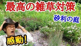 【見ないと損!】園芸店長が日陰のお庭の見本 萌木の村のポールスミザーの庭を解説(後編)。砂利に植えこむグラベルガーデン 雑草除けにも最適 ガーデニングに悩む方必見です!  japan garden