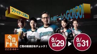 今回の対象期間は8/29(月)~8/31(水)!番組をチェック! 札幌ドーム...