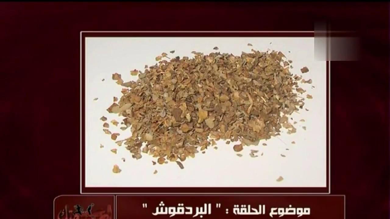 فوائد البردقوش أو المردقوش أو المردكوش | الدكتور أمير صالح