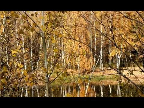 Мелодия ( Картинки осени)