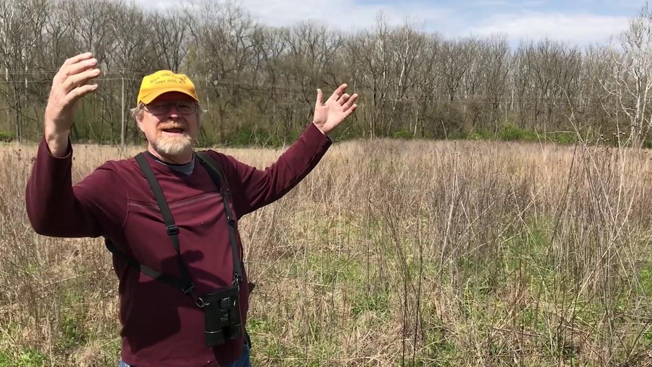 Ohio Prairie Ecosystems - YouTube