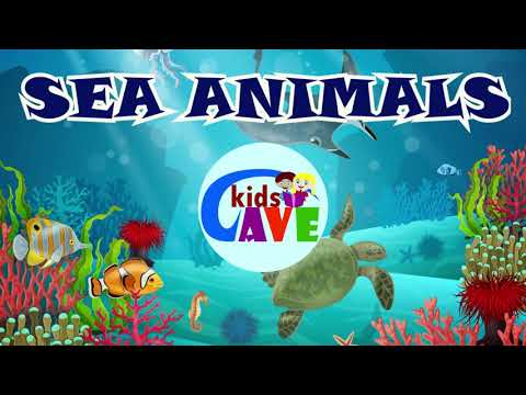 Sea Animal Names | Ocean Animals For Kids  | Learn Sea Animals For Kids | Sea Animals For Kids