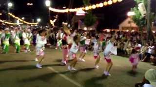 Awa Odori/Awa Dance 2013