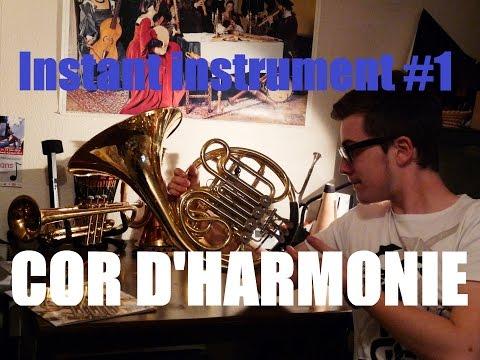 L'instant instrument #1 - Le cor d'harmonie