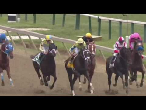 2017 Preakness won at the wire
