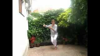 Tai Chi Chi Kung: la forma de los 13 movimientos