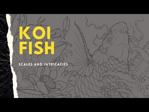 How To Draw Koi Fish - Part 1