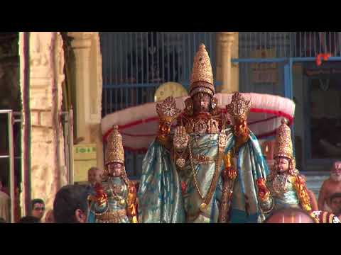 Kanchi Varadarajan - Vaikasi Brahmothsavam 2018_Day 04 Morning_Paththi Ula after Sesha Vahanam_33m
