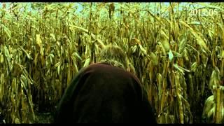 [탐 앳 더 팜] 티저 예고편 Tom à la ferme (2013) teaser trailer (Kor)