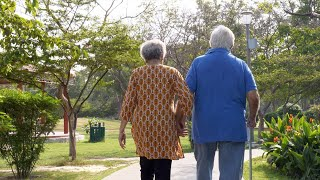Back view shot - Old Indian couple holding hands while walking together in a park