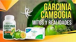 Garcinia Cambogia   Mitos y realidades