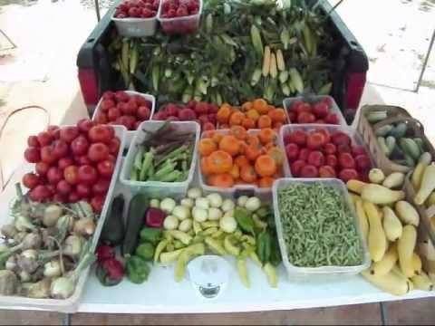 Vegetable Garden Harvest Gods Blessings Abound YouTube
