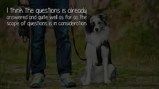 Who Needs Dog Training?