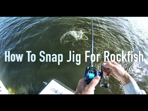 How To Snap Jig For Rockfish