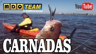 Which baits to use for fishing and other considerations
